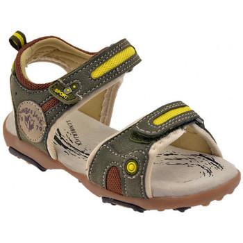 kengät Lapset Sandaalit ja avokkaat Lumberjack  Vihreä