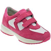 kengät Lapset Matalavartiset tennarit Lumberjack  Vaaleanpunainen