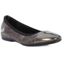 kengät Naiset Balleriinat Frau WAVE TAUPE Marrone