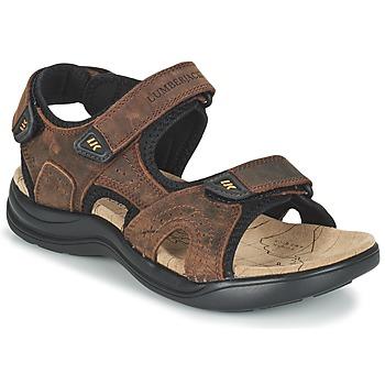 kengät Miehet Urheilusandaalit Lumberjack EARTH Brown