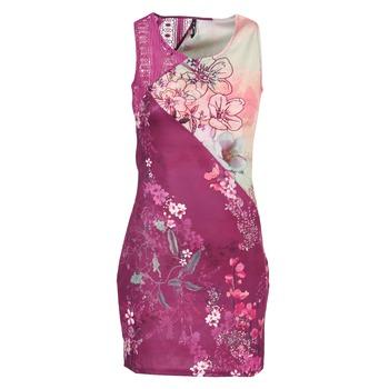 vaatteet Naiset Lyhyt mekko Smash GRETCHEN Pink