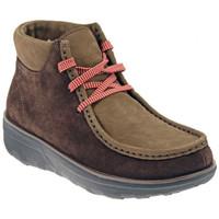 kengät Naiset Bootsit FitFlop
