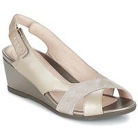 kengät Naiset Sandaalit ja avokkaat Stonefly SWEET TAUPE