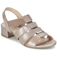 kengät Naiset Sandaalit ja avokkaat Caprice RIJOULE Pink / Metallinen