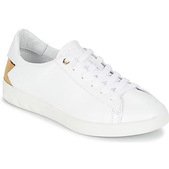 kengät Naiset Matalavartiset tennarit Diesel S-OLSTICE LOW W White / Gold