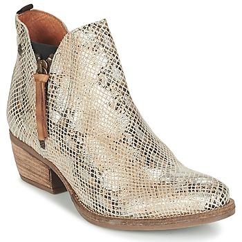 kengät Naiset Bootsit Coqueterra LIZZY BEIGE