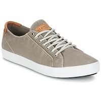 kengät Miehet Matalavartiset tennarit Blackstone NM95 Grey