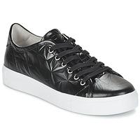 kengät Naiset Matalavartiset tennarit Blackstone NL34 Black