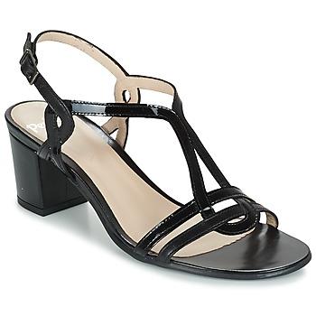 kengät Naiset Sandaalit ja avokkaat Perlato LOABINE Black