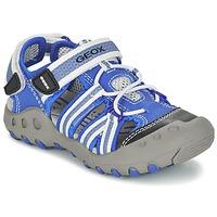 kengät Pojat Urheilusandaalit Geox J SAND.KYLE C Blue / White