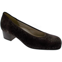 kengät Naiset Korkokengät Calzaturificio Loren LOP5414ma marrone