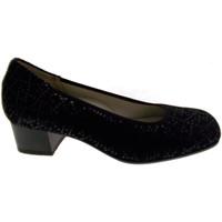 kengät Naiset Korkokengät Calzaturificio Loren LOP5414ne nero