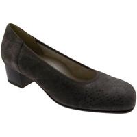 kengät Naiset Korkokengät Calzaturificio Loren LOP5414to tortora