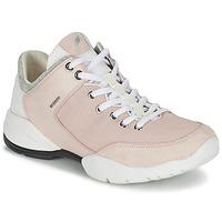 kengät Naiset Matalavartiset tennarit Geox SFINGE A Pink