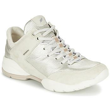kengät Naiset Matalavartiset tennarit Geox SFINGE A White