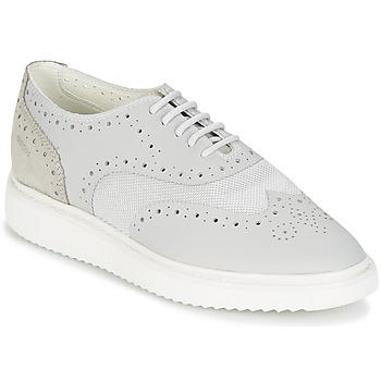 kengät Naiset Matalavartiset tennarit Geox THYMAR B Grey