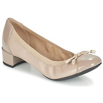 kengät Naiset Korkokengät Geox D CAREY A Taupe