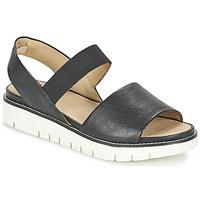 kengät Naiset Sandaalit ja avokkaat Geox D DARLINE C Black