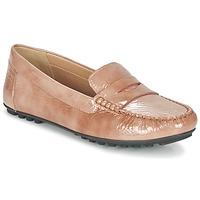 kengät Naiset Mokkasiinit Geox D LEELYAN B BEIGE