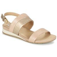 kengät Naiset Sandaalit ja avokkaat Geox D FORMOSA C Pink / Gold
