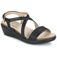 kengät Naiset Sandaalit ja avokkaat Geox D ABBIE A Black