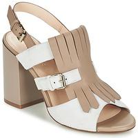 kengät Naiset Sandaalit ja avokkaat Café Noir GONFERT Grey / Beige