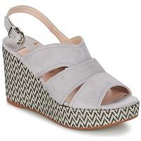 kengät Naiset Sandaalit ja avokkaat Spiral PAULA Grey