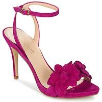 kengät Naiset Sandaalit ja avokkaat Fericelli GLAM Violet