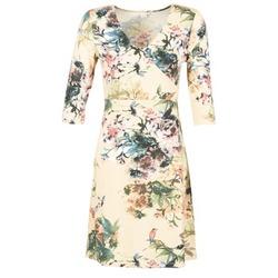 vaatteet Naiset Lyhyt mekko Cream ROSEMARY Monivärinen