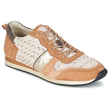kengät Naiset Matalavartiset tennarit Bocage LANNY COGNAC / White