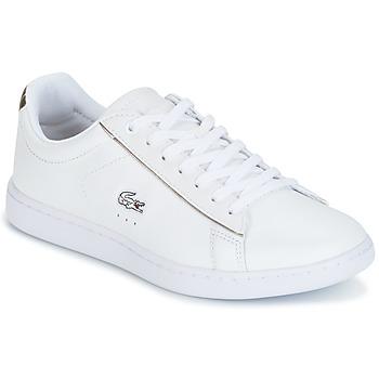 kengät Naiset Matalavartiset tennarit Lacoste CARNABY EVO White