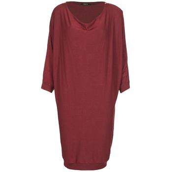 vaatteet Naiset Lyhyt mekko Kookaï BLANDI Bordeaux