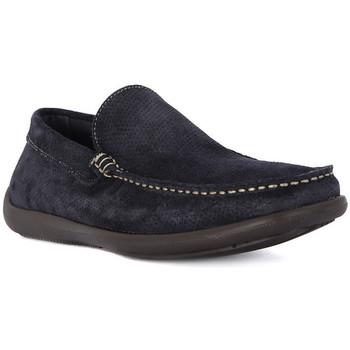 kengät Miehet Mokkasiinit Frau CASTORO BLU Blu