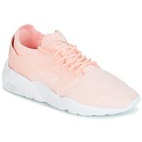 kengät Naiset Matalavartiset tennarit Puma Blaze Cage Knit Wn's Pink