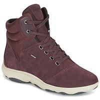 kengät Naiset Korkeavartiset tennarit Geox D NEBULA 4 X 4 B ABX Bordeaux
