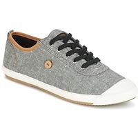 kengät Miehet Matalavartiset tennarit Faguo OAK01 Grey