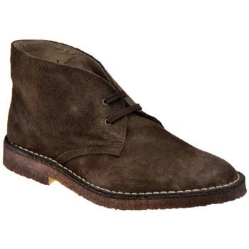 kengät Miehet Bootsit Koloski  Ruskea