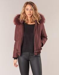 vaatteet Naiset Pusakka Oakwood 62432 Bordeaux