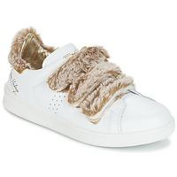 kengät Naiset Matalavartiset tennarit Ippon Vintage FLIGHT POLAR Valkoinen / Cuivré