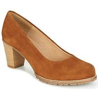 kengät Naiset Korkokengät MTNG ZERMO Brown