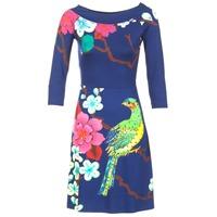 vaatteet Naiset Lyhyt mekko Desigual MARTA Blue