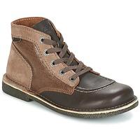 kengät Naiset Bootsit Kickers LEGENDIKNEW Brown / Fonce