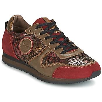 kengät Naiset Matalavartiset tennarit Pataugas IDOL Red / Brown