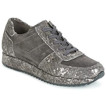 kengät Naiset Matalavartiset tennarit Perlato TINA Grey