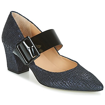 kengät Naiset Korkokengät Perlato JESSY Blue / Black