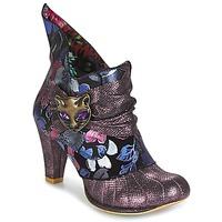 kengät Naiset Nilkkurit Irregular Choice MIAOW Violet