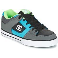 kengät Miehet Skeittikengät DC Shoes PURE Grey / Green / Blue