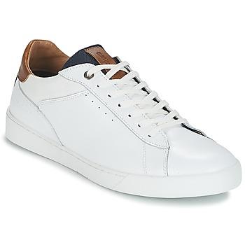 kengät Miehet Matalavartiset tennarit Redskins AMICAL Valkoinen