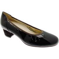 kengät Naiset Korkokengät Calzaturificio Loren LO60769ma marrone