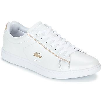 kengät Naiset Matalavartiset tennarit Lacoste CARNABY EVO 118 6 Valkoinen